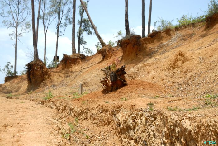 Deforestation in Manipur (In May 2010)