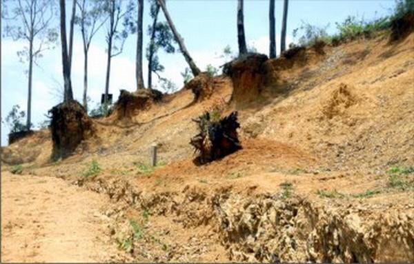 Large scale deforestation renderinng a hill side barren