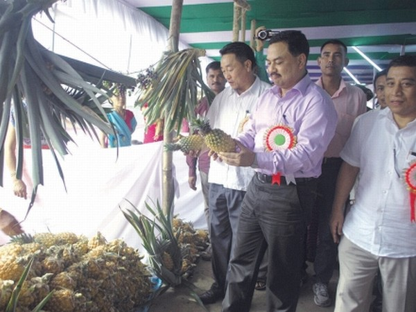 Minister M Okendro examining pineapples in the fair
