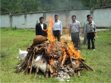 Wildlife articles seized by different law enforcing agencies being disposed off by the officials of State Forest Department